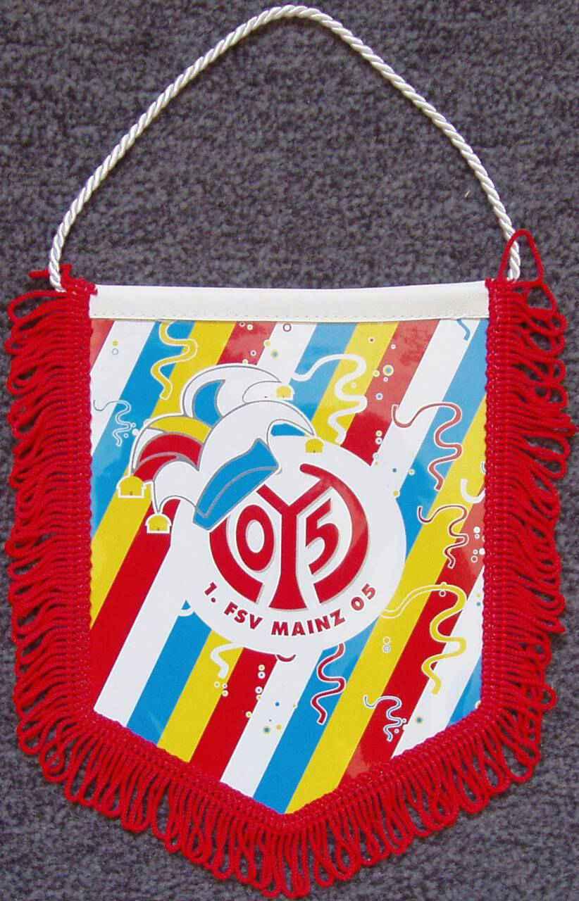 Mainz 05 Banner Fastnacht