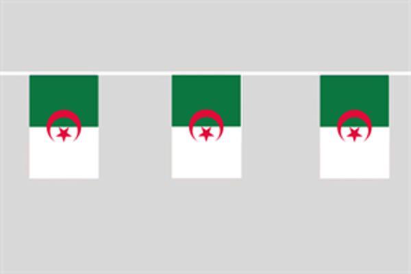 Flaggenkette Algerien 6 m 8 Flaggen