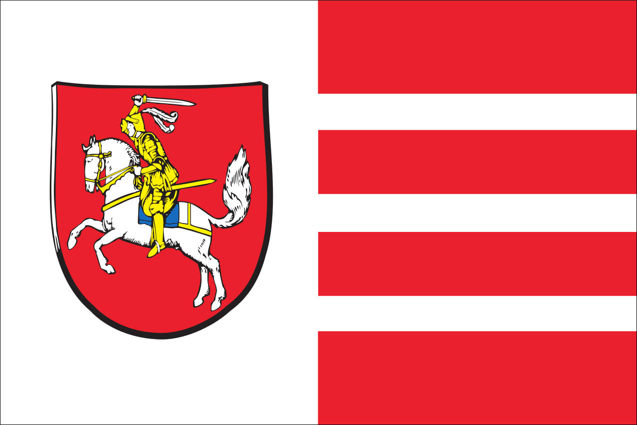 Flagge Dithmarschen 80 g/m²