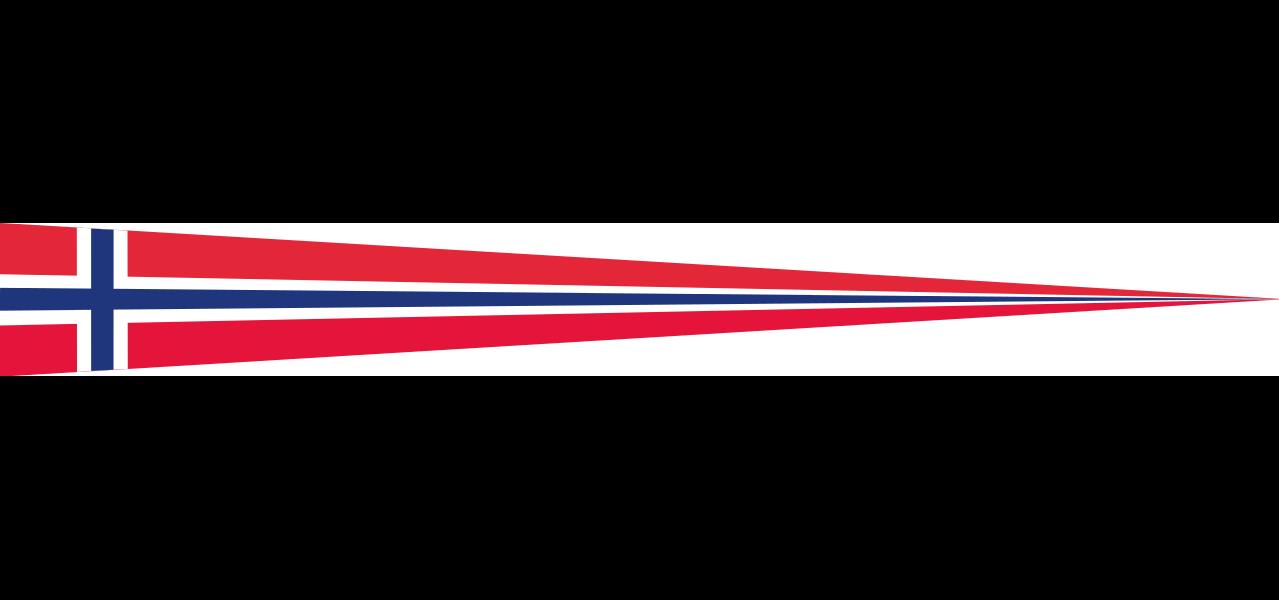 Wimpel Norwegen 80 g/m²