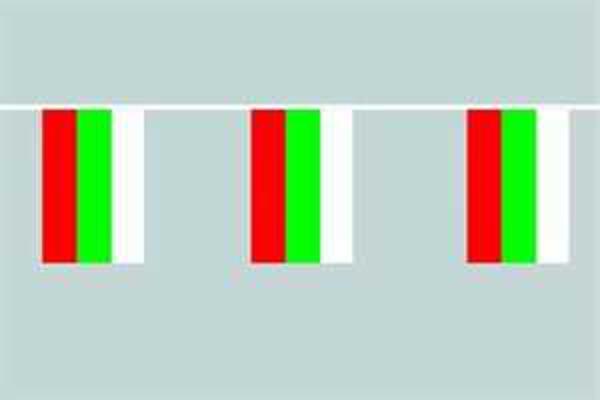 Flaggenkette Bulgarien 6 m 8 Flaggen